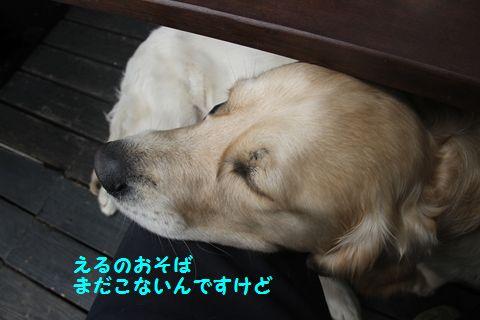 20110509_09_R.jpg