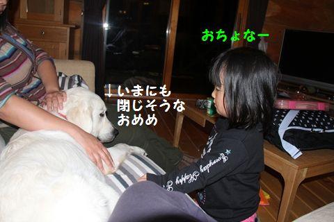 20110509_20_R.jpg