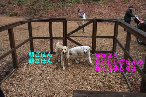 20110510_01_R.jpg