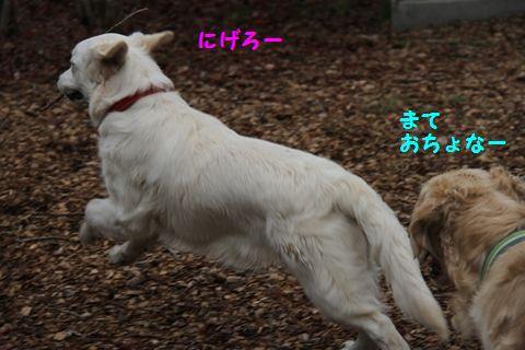20110510_04_R.jpg