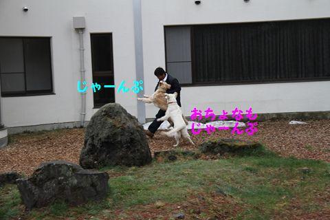 20110510_11_R.jpg