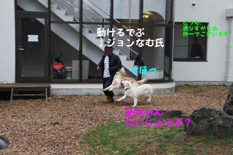 20110510_12_R.jpg