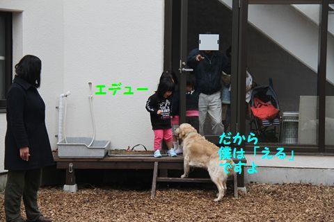 20110510_13_R.jpg