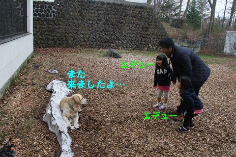 20110510_19_R.jpg