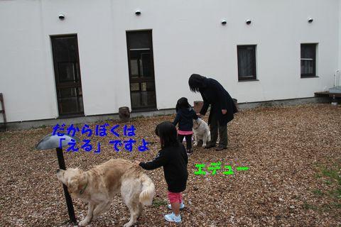 20110510_21_2R.jpg