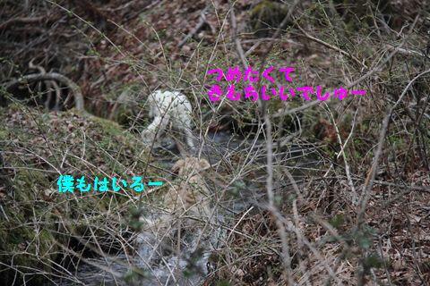 20110511_04_R.jpg