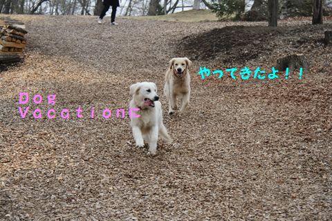 20110511_08_R.jpg