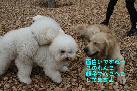 20110511_16_R.jpg
