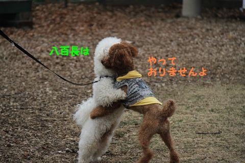 20110511_18_R.jpg