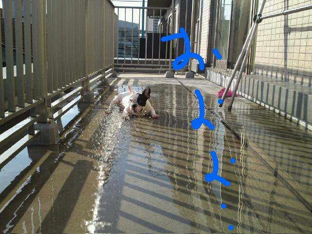 rakugaki_20110908_0001.jpeg