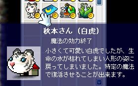 秋本さん2度目の人形