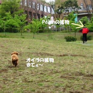 arashi020.jpg