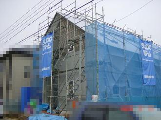 2008_2_15_1.jpg