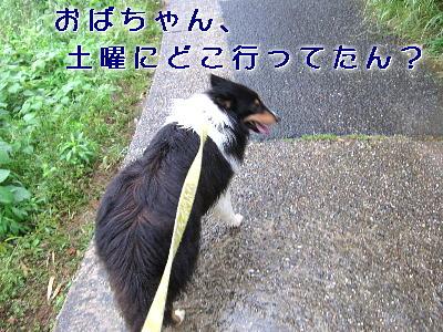 110604_03.jpg