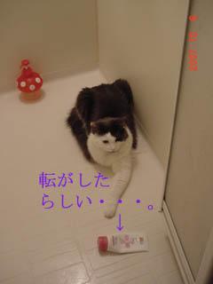 風呂場デビュー