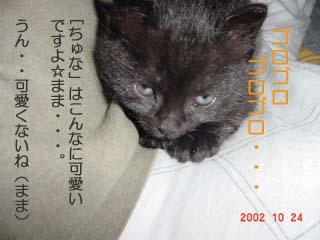 t.2002.10.24-3.jpg