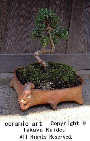 tougei-hati-bonsai.jpg
