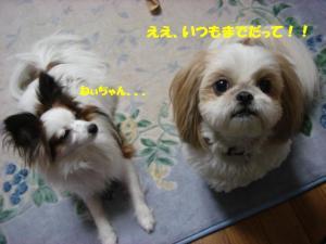 DSC04785-・祇convert_20080215205247