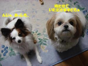 DSC04786-・祇convert_20080215205307
