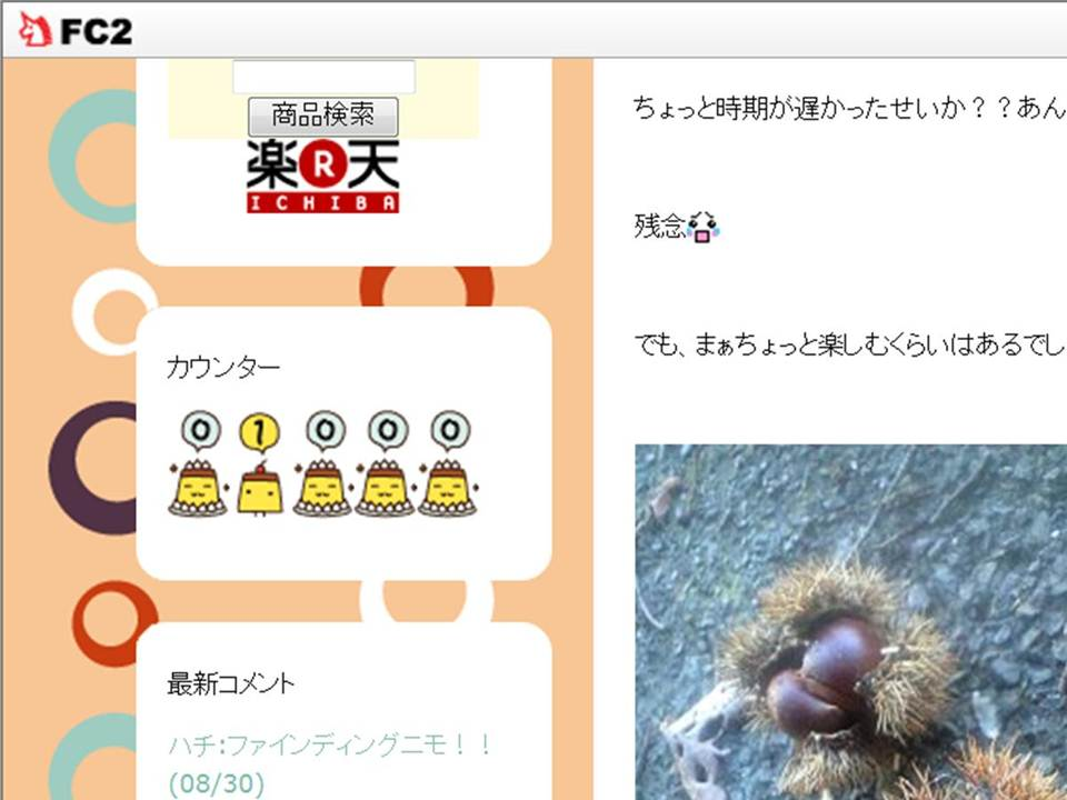 祝 1000 hits !!