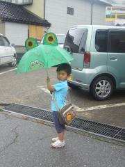 カエルの傘