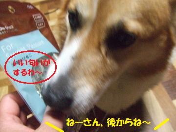 001_convert_20110410054206.jpg
