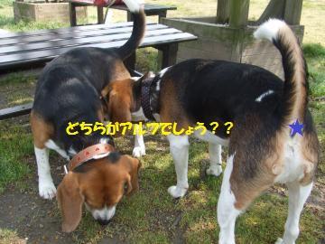 005_convert_20110425014858.jpg