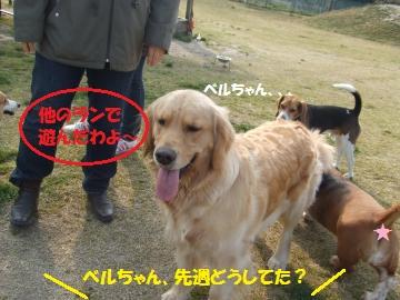 007_convert_20110406010711.jpg