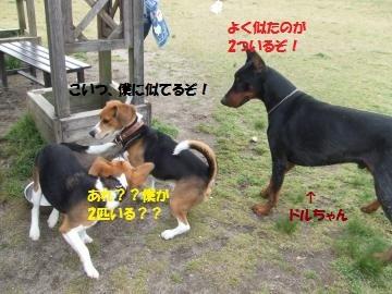 022_convert_20110428052825.jpg