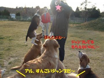 027_convert_20110406011155.jpg