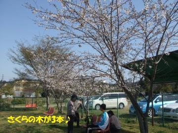 051_convert_20110412234255.jpg