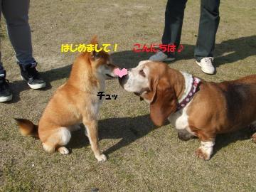 054_convert_20110412232147.jpg