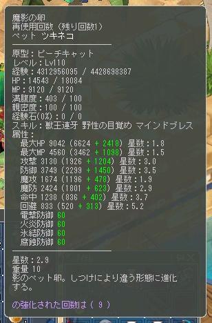 ツキネコ110②
