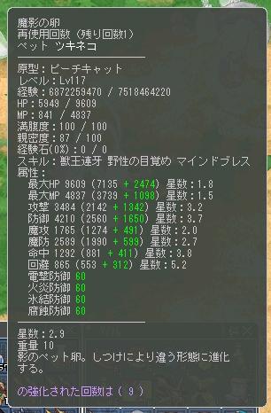 ツキネコ117