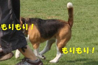 11 IMG_3842