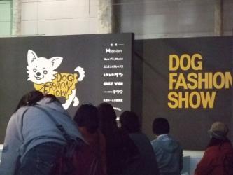ドッグファッションショー