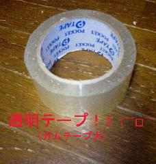 img20061115_1_p.jpg