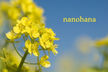 070311ナノハナ