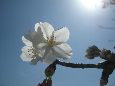 2011.2.11-12職員旅行(浜松) 125