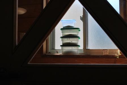 2011.5.5自家製酵母のパン焼きデー 003