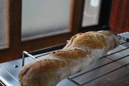 2011.5.5自家製酵母のパン焼きデー 023