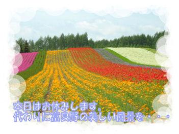 oyasumi_gazo_003