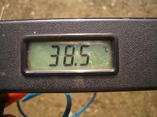 2011.8.12 006午後3時GL+150