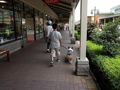 オサレな散歩だぜ☆
