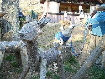 木馬と一緒。