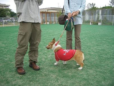 赤い衣装がキマってるぜ☆