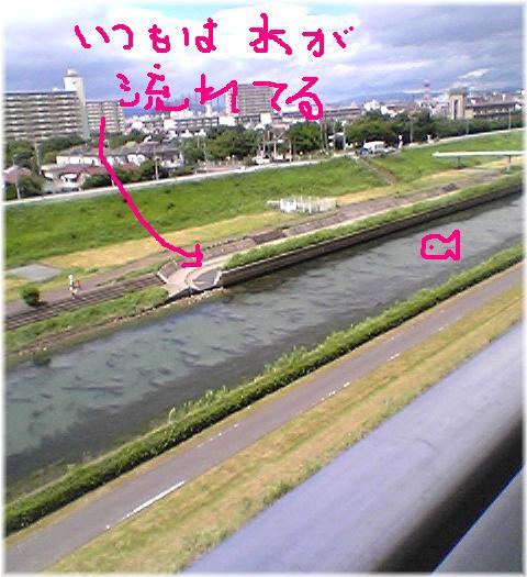 kanzakigawa