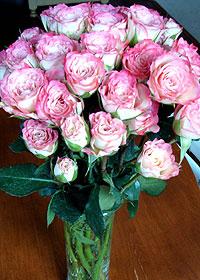 薔薇の花♪