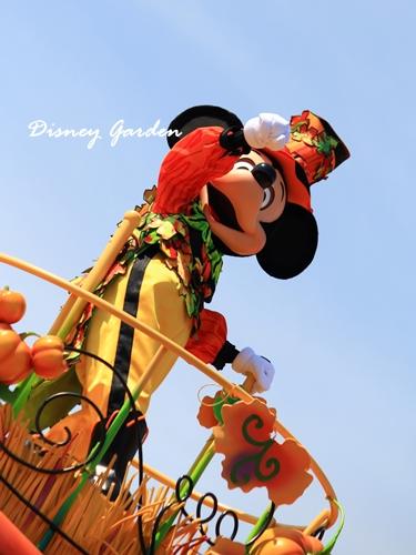 Harvest_Mickey2.jpg