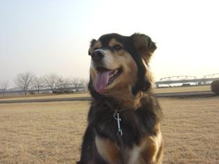 jan8鬼怒川の公園 021A